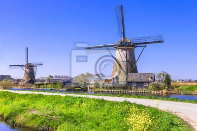 campo tradicional de Holanda - Kinderdijk, ver con molino de viento