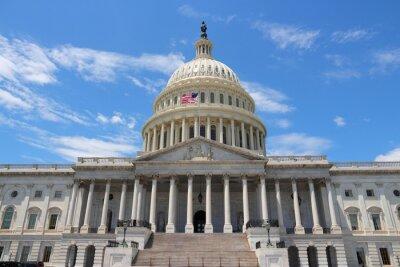Cuadro Capitolio Nacional, Washington DC