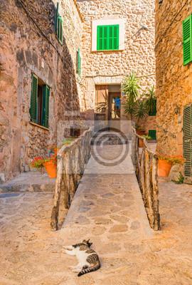 Casas tradicionales en el antiguo pueblo de Valldemossa Mallorca España
