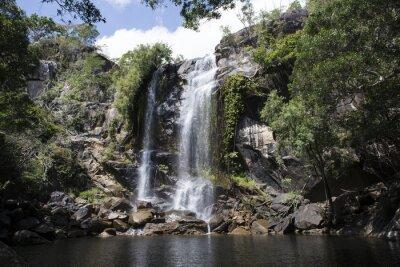 Cuadro Cascada grande con agua abundante en el medio de una foresta. Cooktown, Queensland, Australia