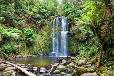 Cuadro cascada Tasmania