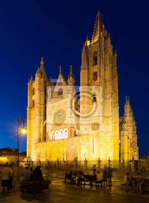 Catedral de leon en la noche