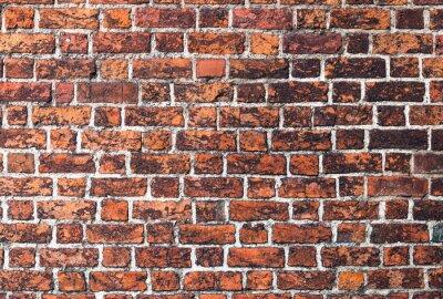 Cuadro Cegła mur Gotyk tekstura