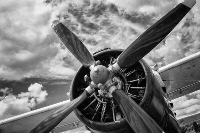 Cuadro Cerca de viejo avión en blanco y negro