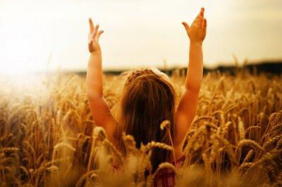 Cuadro Chica en un trigo