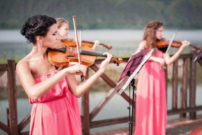 Cuadro Chicas toca el violín