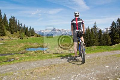Cuadro Ciclismo de Montaña