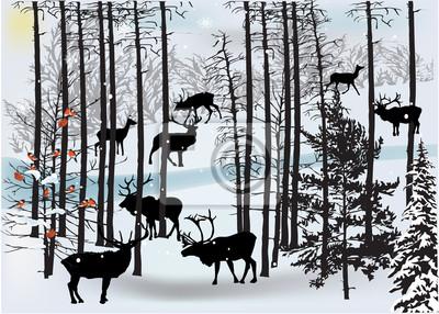 ciervos en paisaje blanco del invierno