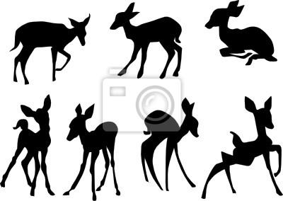 ciervos jóvenes