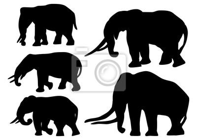 cinco siluetas de elefantes aislados en blanco