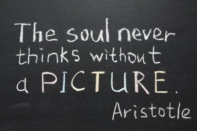 Cuadro Cita a Aristóteles