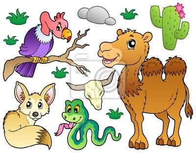 Cuadro Colección De Los Animales Del Desierto 1