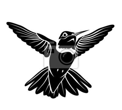 Colibrí Pájaro Negro Sobre Un Fondo Blanco Pinturas Para La Pared