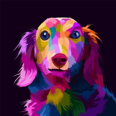 Cuadro colorful dog pop art portrait vector