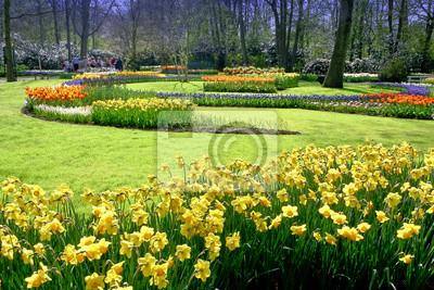 Colorido jardín de los tulipanes