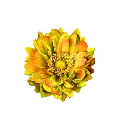 Cuadro Colorido Mona Lisa flor, floración de primavera
