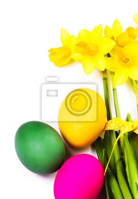 Cuadro Coloridos huevos de Pascua y flores de primavera narciso aislado en wh