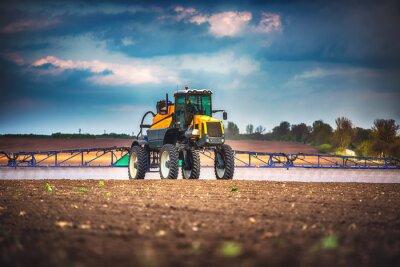 Cuadro Combine cosechadora agricultura cosecha de la máquina campo de trigo maduro de oro