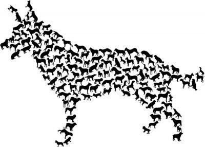 compleja silueta del perro aislado en blanco