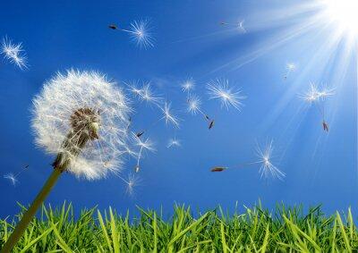 Cuadro concepto de alergia en primavera - exclusiva