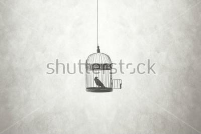 Cuadro Concepto mínimo de libertad, pájaro en jaula abierta.