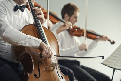 Cuadro Concierto de música clásica