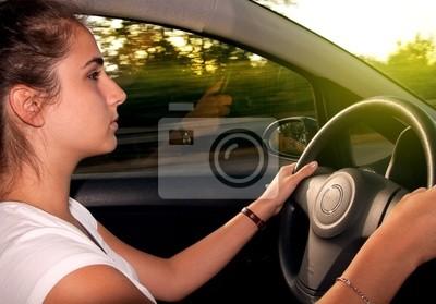 Cuadro Conducir