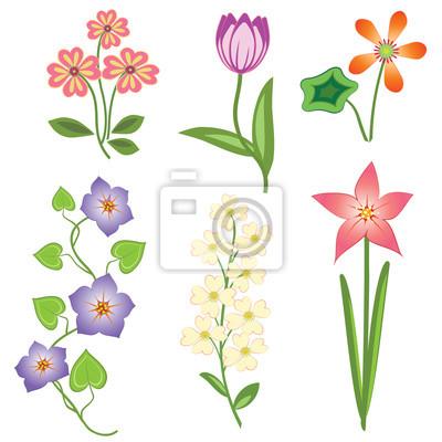 Conjunto de flores. tulipán, margarita de la manzanilla lirio ...