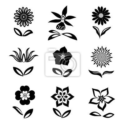 Conjunto de iconos de flores. manzanilla, margarita, orquídea ...