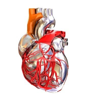 Corazón Humano Pinturas Para La Pared Cuadros Válvula Exámenes