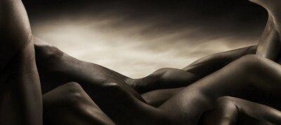 Cuadro corpi di nudo artistico