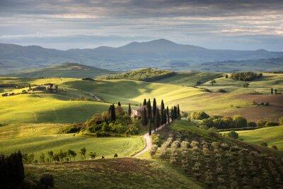 Cuadro Countryside near Pienza, Tuscany, Italy