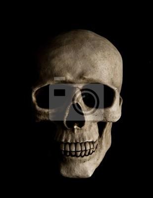 Cráneo humano pinturas para la pared • cuadros deteriorado, hueso ...