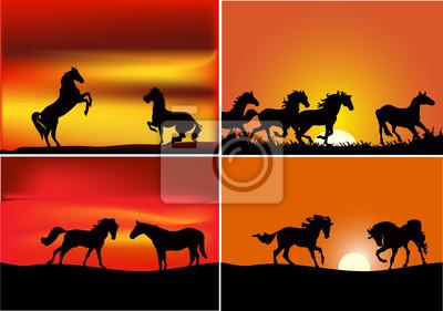 Cuadro cuatro composiciones con los caballos al atardecer