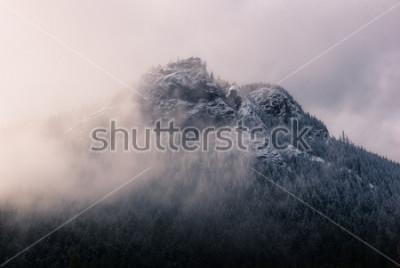 Cuadro Cuña de cascabel en las nubes.