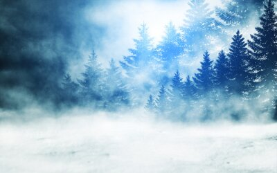 Cuadro Dark winter forest background at night. Snow, fog, moonlight. Neon figure in the center