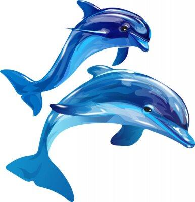 Cuadro Delfines blanco