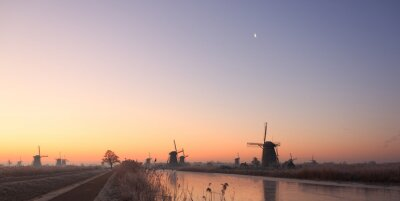 Despertar los Países Bajos