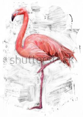 Cuadro Dibujo de pájaro flamenco / pintura al óleo