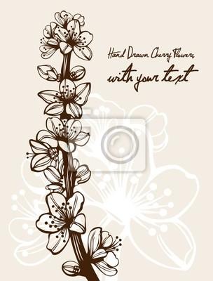 Dibujo Detallado Flores De Cerezo Rama Alta Calidad Pinturas Para La