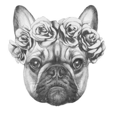 Cuadro Dibujo original de Bulldog francés con rosas. Aislado en el fondo blanco