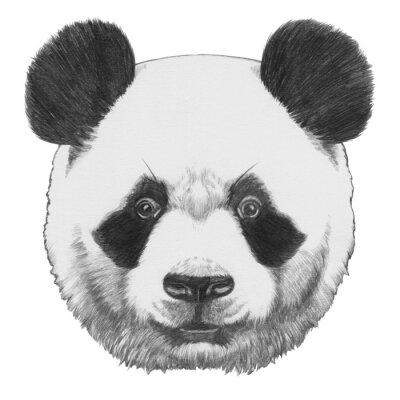 Cuadro Dibujo original de la panda. Aislado en el fondo blanco