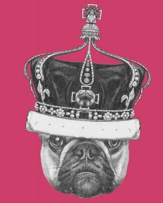 Cuadro Dibujo original del Bulldog Francés con la corona. Aislado en el fondo de color