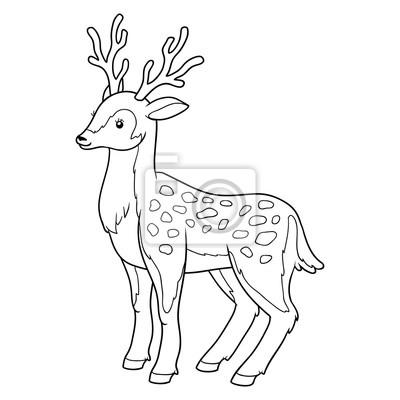 Dibujo para colorear para niños (ciervos) pinturas para la pared ...