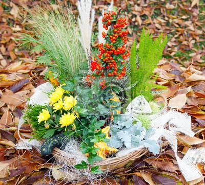 Cuadro Disposición de otoño en el follaje pradera