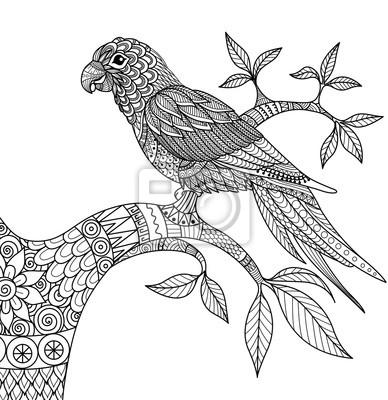 Doodle diseño de loro en la rama para adultos para colorear pinturas ...