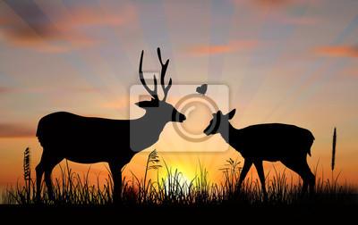 dos ciervos al atardecer ilustración