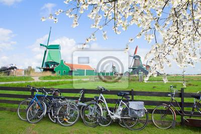 dutch windmills with bikes in Zaanse Schans
