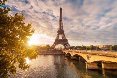 Cuadro Eiffelturm en París