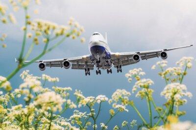 Cuadro El avión comercial del pasajero vuela sobre campos de flor en el aeropuerto.